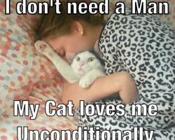 Crazy Cat Ladies Everywhere