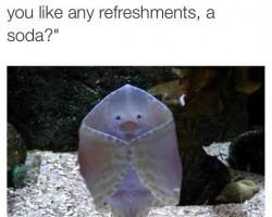 Underwater Host