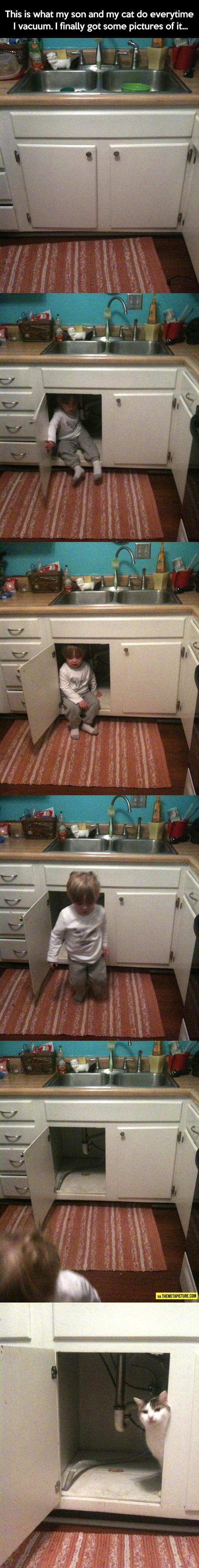 cool-vacuum-child-kid-cat-cupboard-hideout