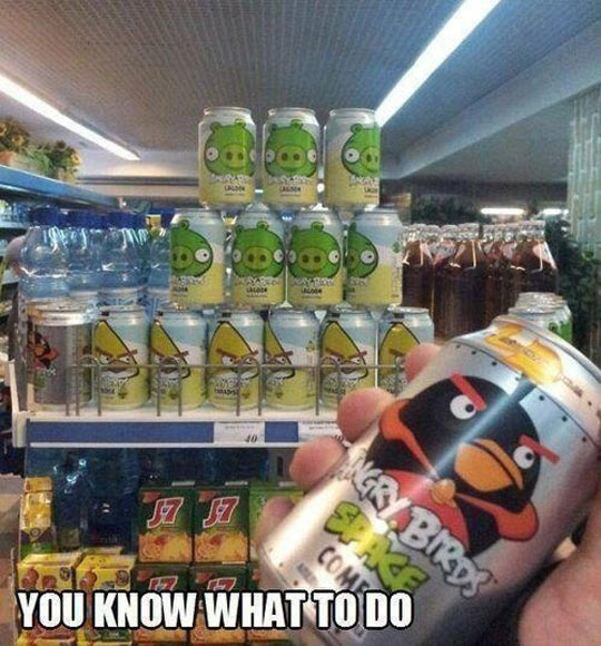 funny-angry-birds-cans
