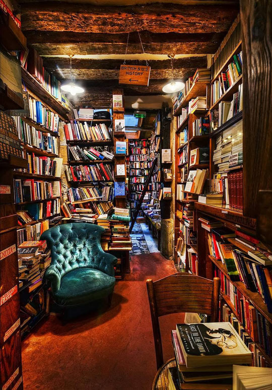 If I Had This Library At Home, I
