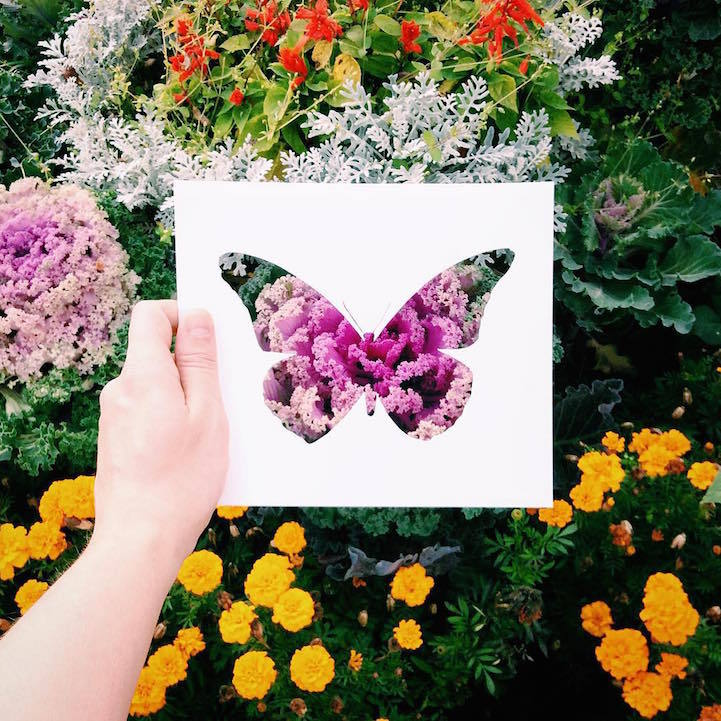 Cutouts against natural colors