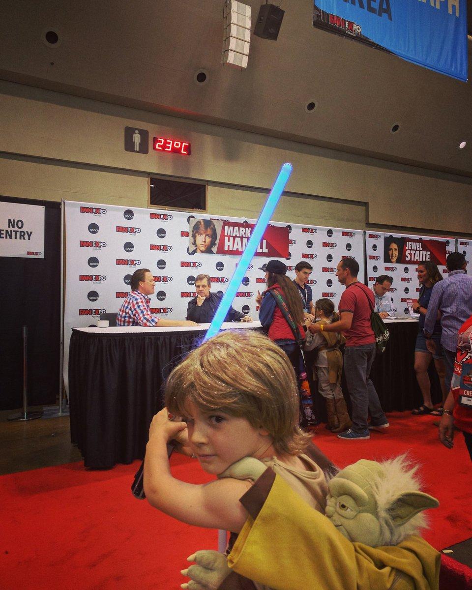 Future Luke Skywalker photobombs his past self.