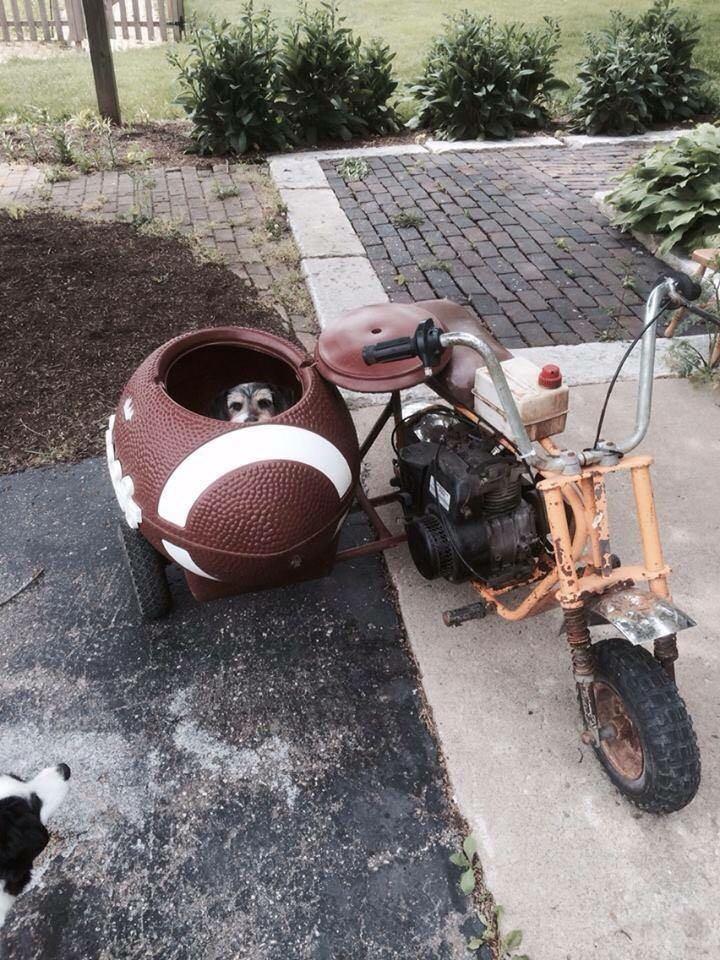 Sidecar buddy