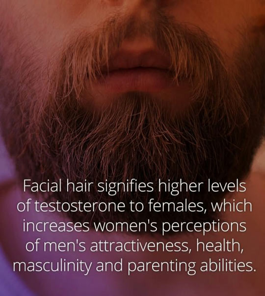 cool-beard-men-fact-quote
