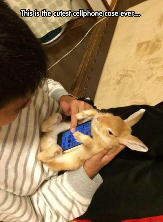 Fluffy Phone Case
