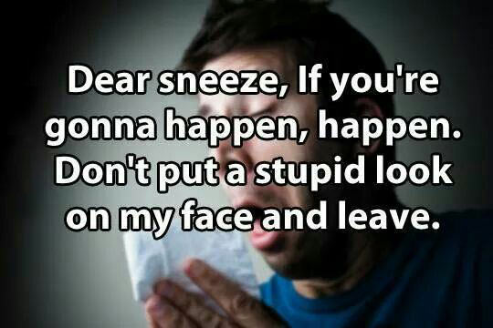 cool-sneeze-stupid-face-leave