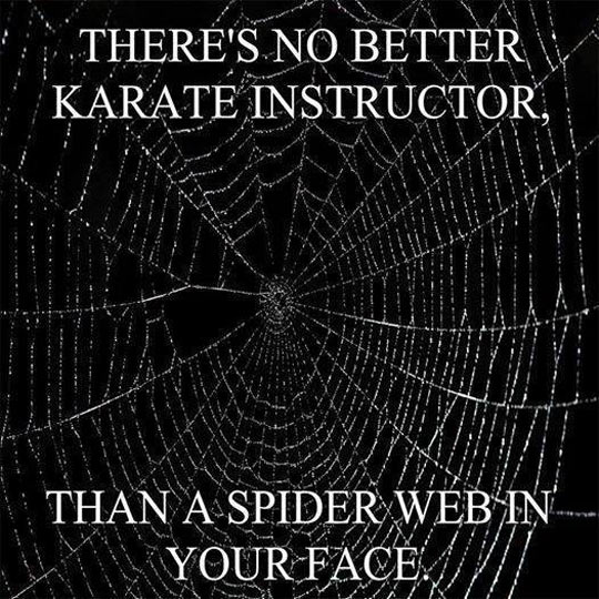 Best Karate Instructor Ever
