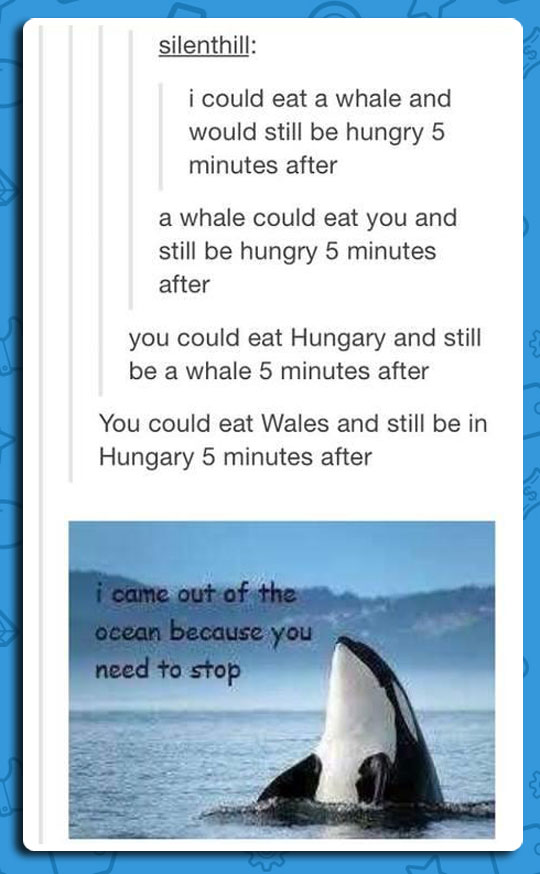 I Could Eat A Whale