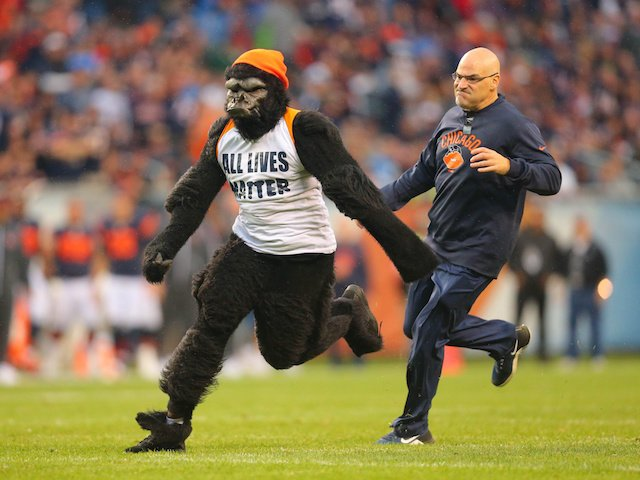 A guy wearing a gorilla suit