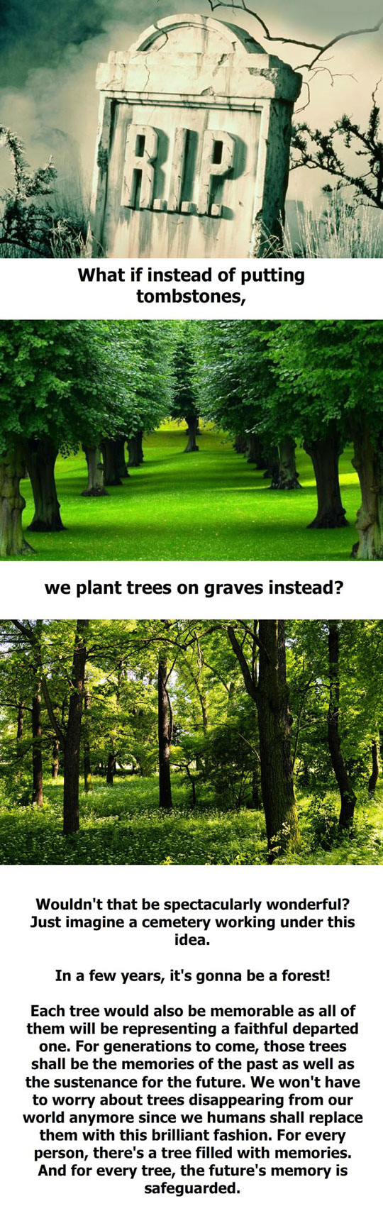 They Would Be The Most Wonderful Cemeteries