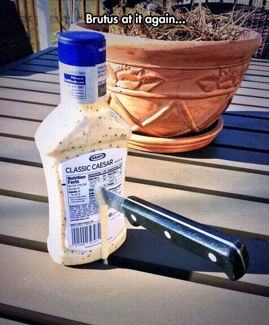 Romaine Tragedy