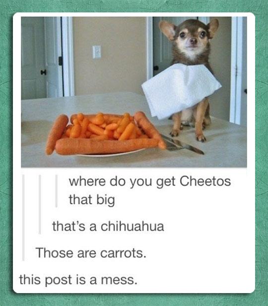 Cheetos That Big