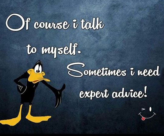 cool-Daffy-Duck-crazy-advice