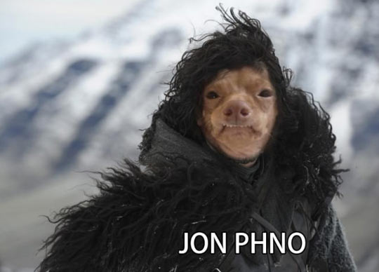 cool-John-Snow-Stephen-swap-face