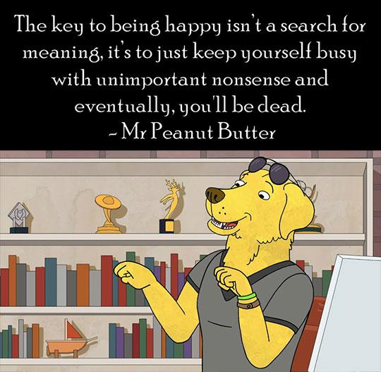 cool-Mr-Peanut-Butter-BoJack-Horseman-quote