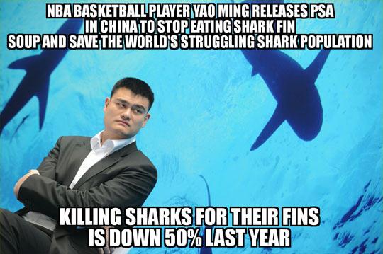 Yao Ming Doing It Right