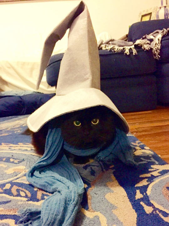 Perfect Black Mage