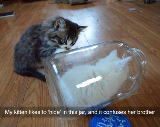 Hidden In The Jar