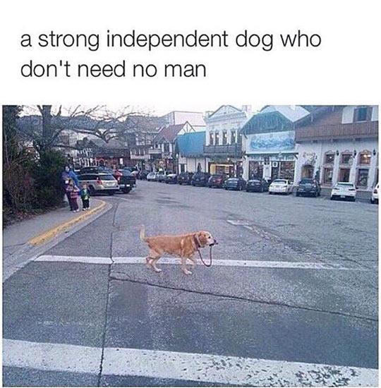 I Walk Myself, Thank You