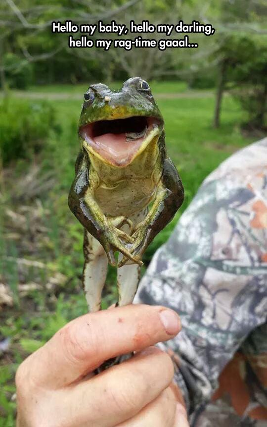 Real Michigan J. Frog