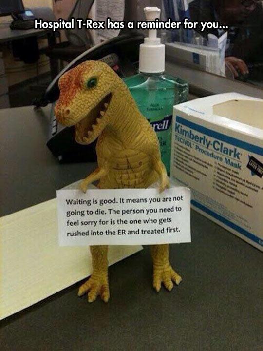 Hospital T-Rex