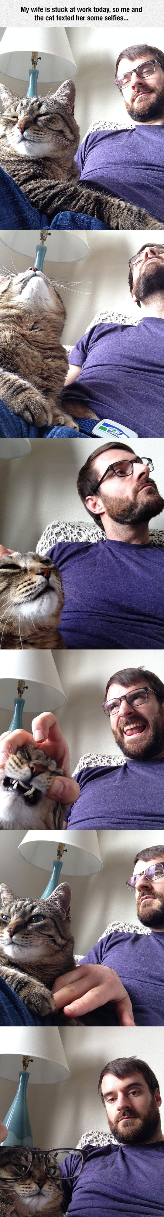 Selfie Time With The Cat
