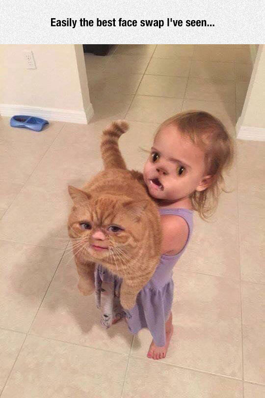 funny-cat-face-swap-girl