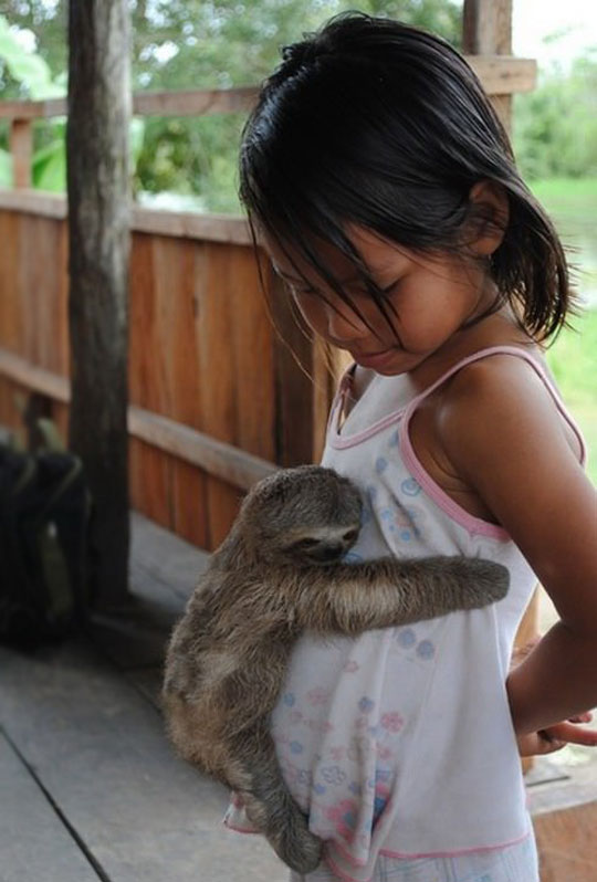 sloth-cute-hugging-girl