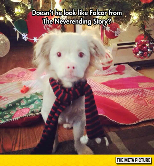 Falcor Is Back