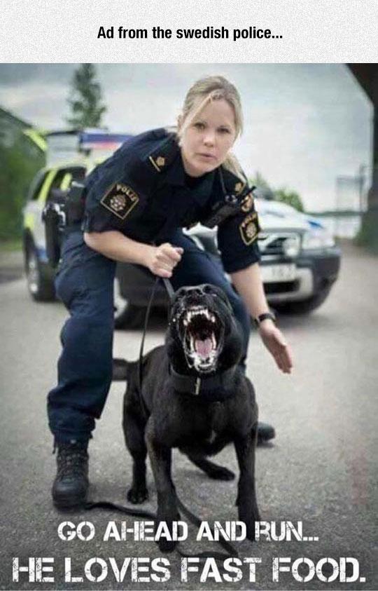 Swedish Police Doesn