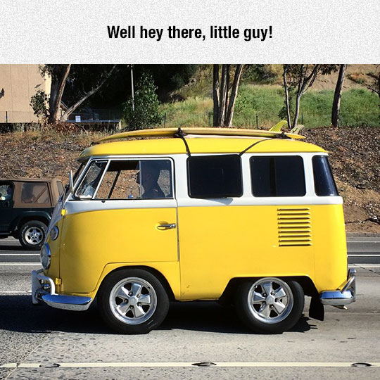 An Ancestor To The Short Bus