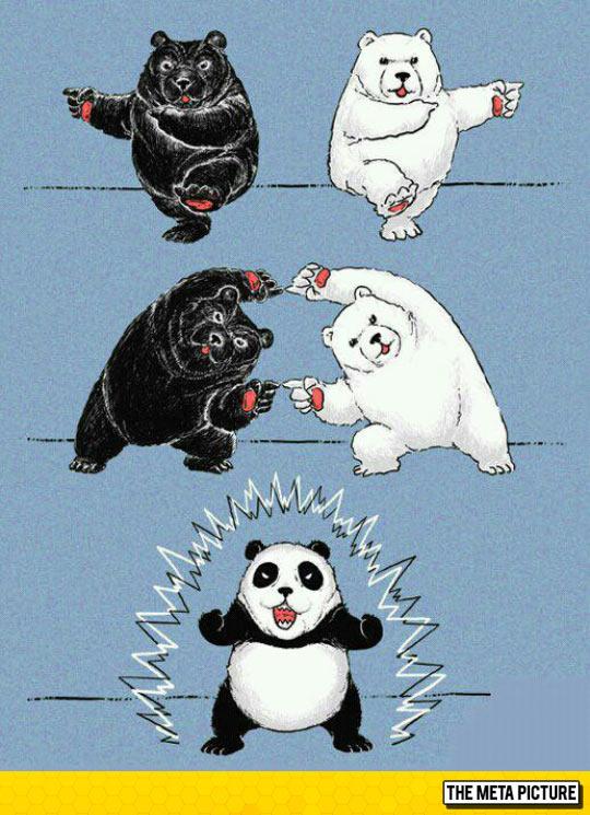 How Pandas Are Made
