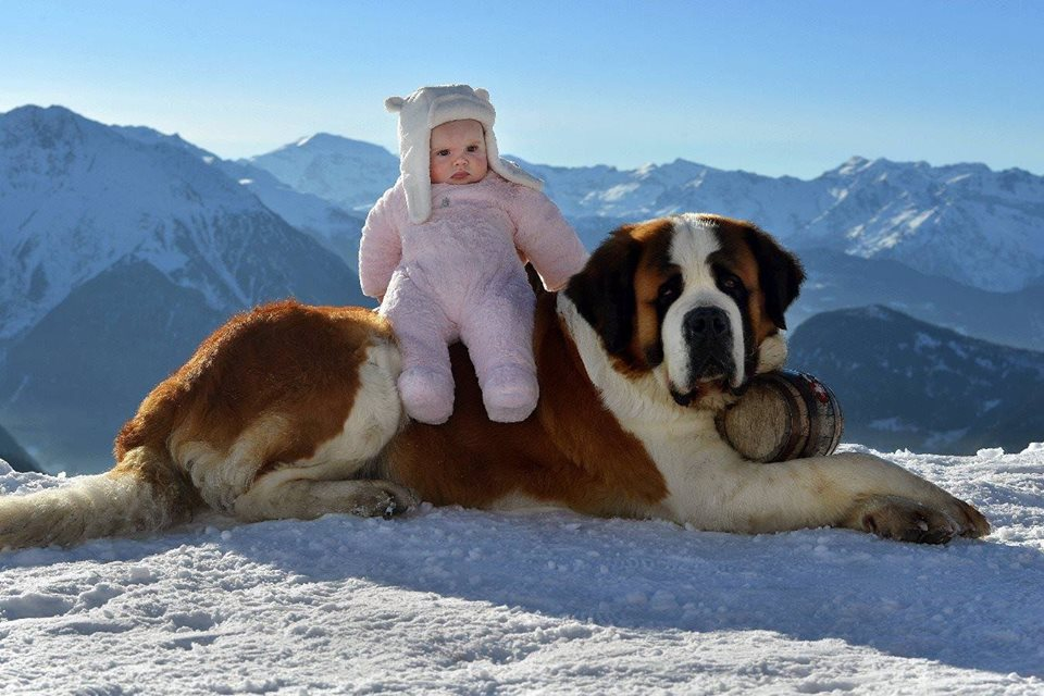 A Warrior and Her Steed