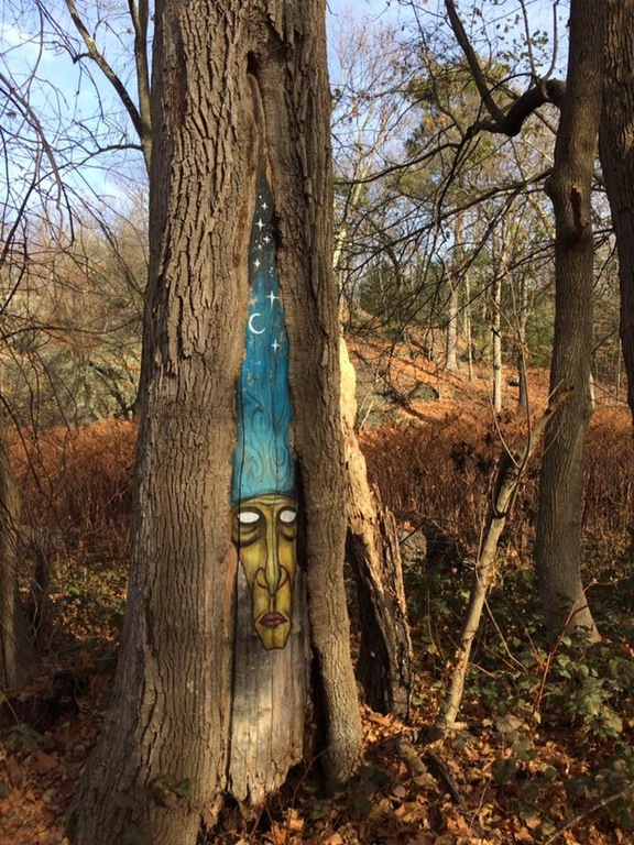 There be wizards in the woods of Boston