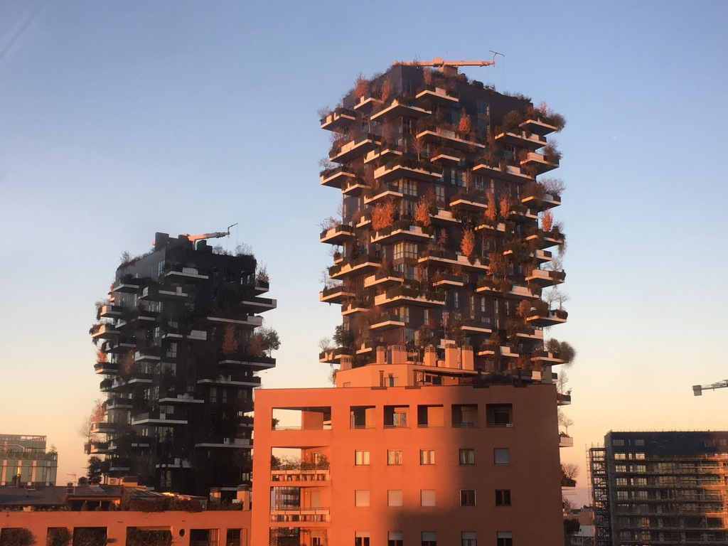 Vertical Forest at dusk, from my office