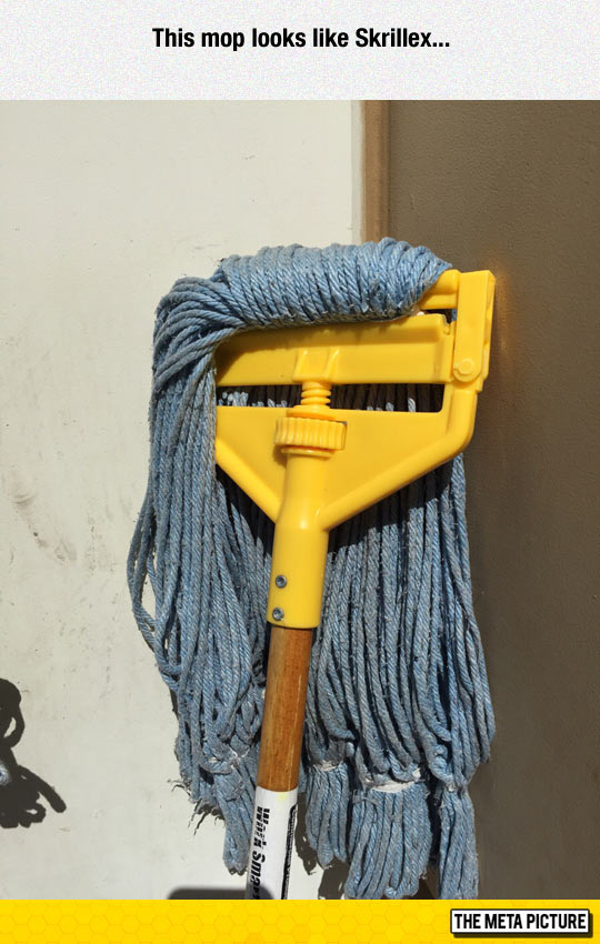 funny-Skrillex-mop-lookalike