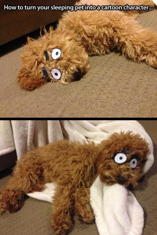 Cartoon Character Dog