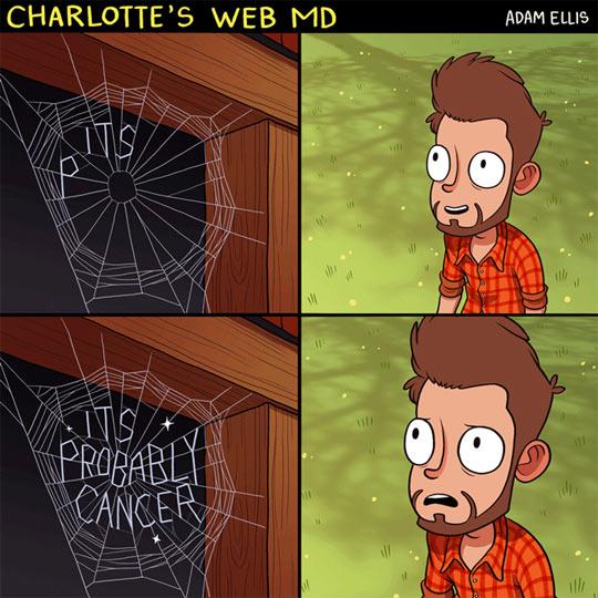 Charlotte's Web MD