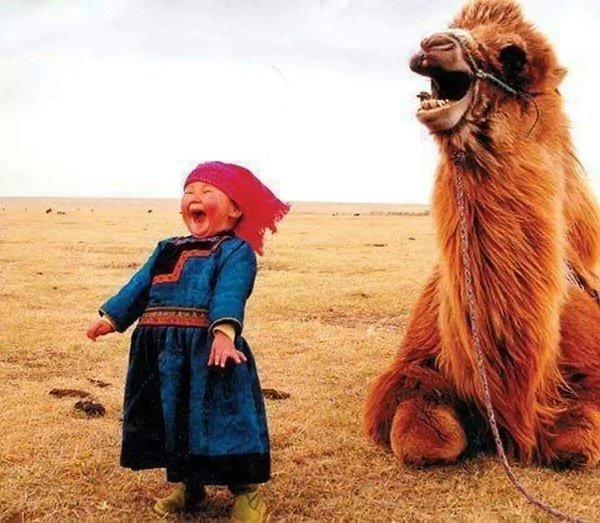 Such Joy