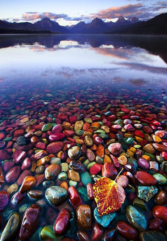 Beautiful Pebble Shore Lake In Glacier National Park, Montana