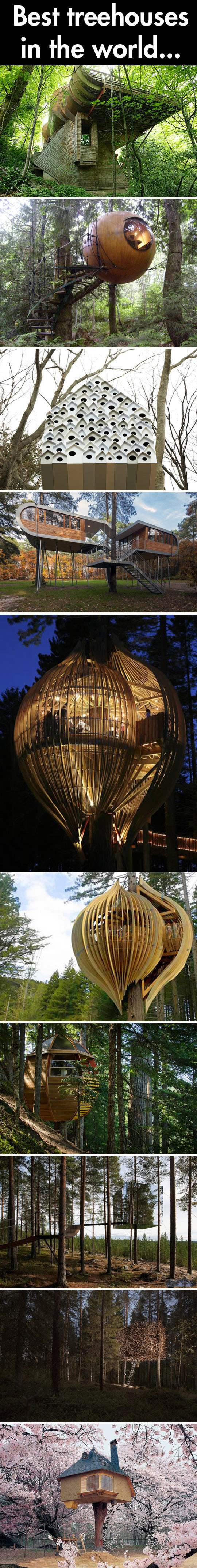 Cool Tree Houses Of The World