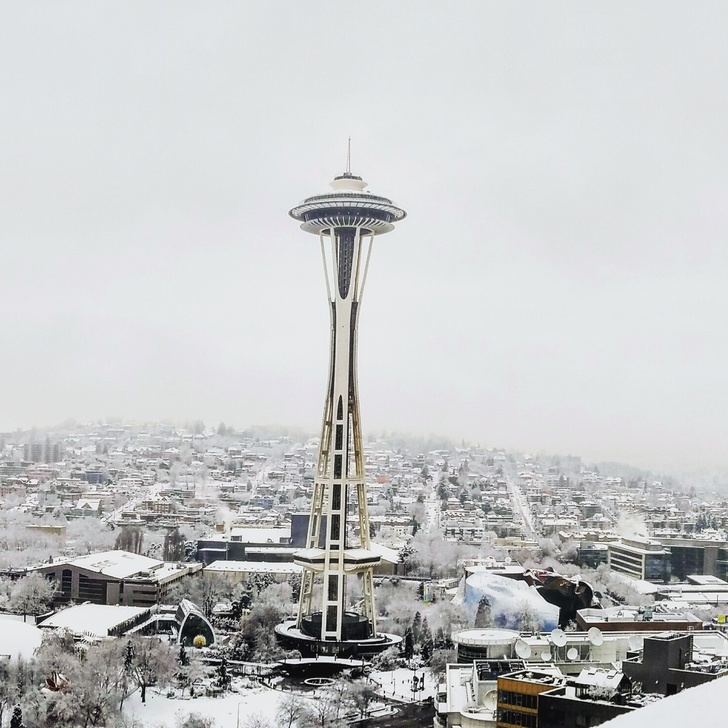 Snowy In Seattle