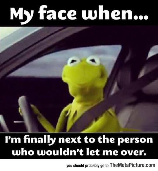 cool-Kermit-Frog-car-face