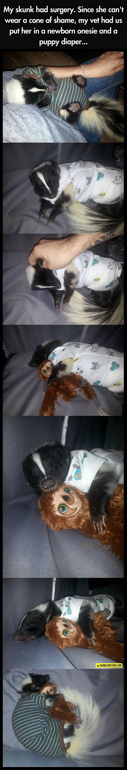 cool-skunk-baby-diaper-surgery