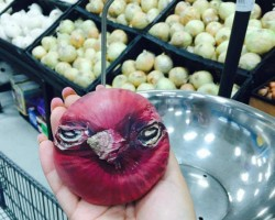 Angry Onion