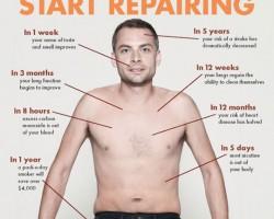 Quit Smoking, Start Repairing