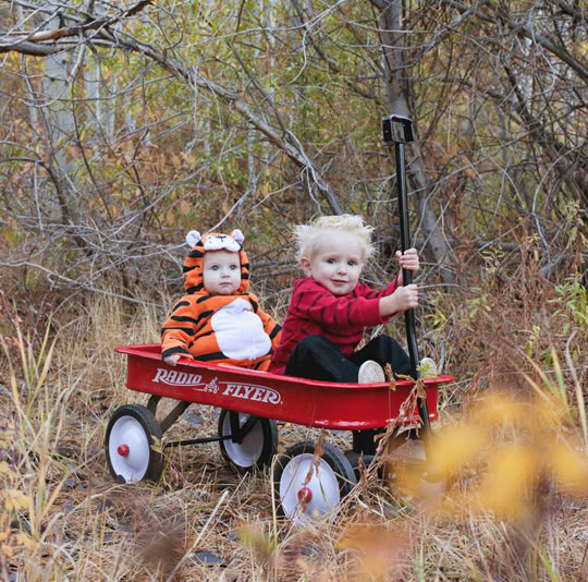 Calvin and Hobbes out for a ride before trick or treating