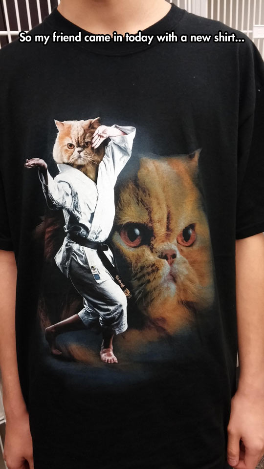Karate Cat T-Shirt