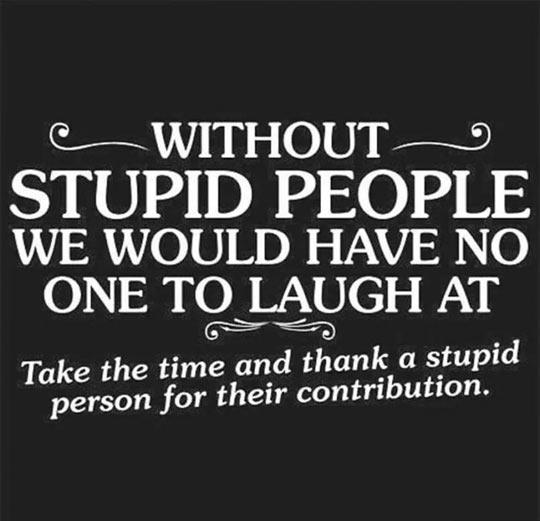 Thanks, Dumb People